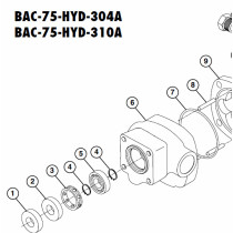 Ace Pumps Ball Bearing (43225)