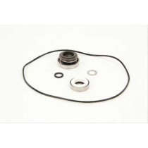 Ace Pump RK-FMC-150 Repair Kit