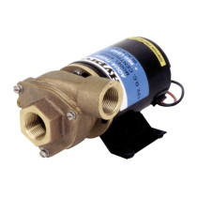 Hypro Aqua Tiger 19 GPM 12-Volt DC Motor Driven, Bronze (9700B)